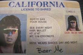 License Shred To To Shred License Funny