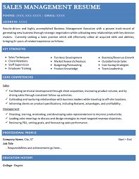 functional resume samples functional resume format