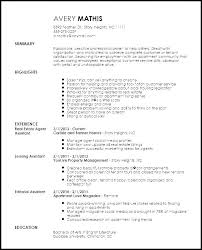 Real Estate Resumes Inspiration Real Estate Agent Resume Sample Quickplumberus