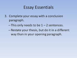 thesis writing essay basics in just about every essay the prompt  16 essay essentials