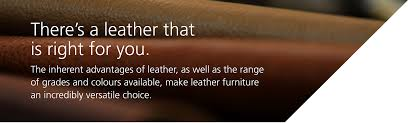 ready to explore your leather options