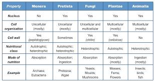 Table kingdom animalia Characteristics Kingdoms Table Bioninja Types Of Cells Bioninja