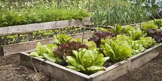 garden design plans. Free Garden Plans Design L
