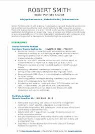 Job Application Portfolio Example Portfolio Analyst Resume Samples Qwikresume