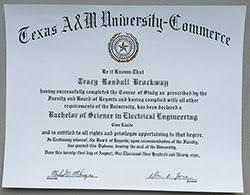 Diploma Samples Diploma Samples