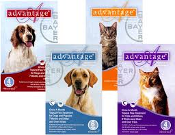 imidacloprid for dogs. Beautiful Dogs Safe For Dogs At Least 7 Weeks Old And Over 3 Lbs Cats 8  5 Lbs  Inside Imidacloprid For Dogs