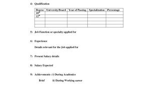 Biodata Format For Job In Word Resume Format For Security Officer And Biodata Format For Job In