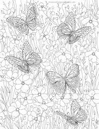 Kleurplaat Volwassenen Vlinders Gratis Kleurpaginas Om Te