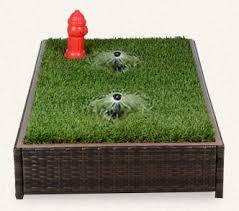 dogs bathroom grass. best 25+ fake grass for dogs ideas on pinterest | artificial dogs, cat garden and dog run side yard bathroom