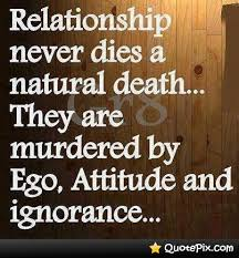 Natural Love Quotes Natural Love Quotes Interesting Relationship Never Dies A Natural 7