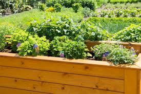Hochbeet Gartengestaltung Mal Anders Ernte Auf Augenh He
