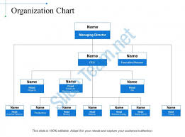 It Organization Chart Example 65974672 Style Hierarchy 1 Many 4 Piece Powerpoint