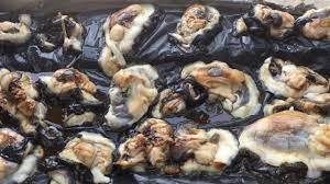 อุทยานฯพีพี ขู่เชือดนักล่าหอยมือเสือ ส่งขายคนจีนเชื่อเป็นยาโด๊ปชั้นดี(คลิป)