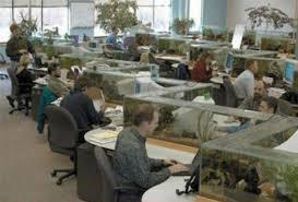 fish tank stand design ideas office aquarium. Office Aquarium Doubles As Desk Divider TwistedSifter Inside Fish Tank Design 18 Stand Ideas