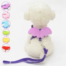 <b>Cute Small Pet Dogs Cats</b> Leashes Collars Set <b>Puppy</b> Leads Angel ...