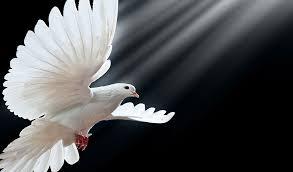 Znalezione obrazy dla zapytania zesłanie ducha świętego 2017