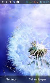 galaxy s3 water dandelion live wallpaper apk free download. download the free yellow dandelions live wallpaper lwp . galaxy s3 water dandelion apk i