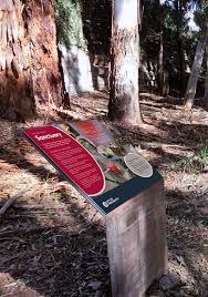 Environmental Interpretive Signs Parramatta Council