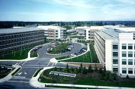 photo microsoft office redmond washington. Photo Microsoft Office Redmond Washington. Augusta Complex, Redmond, Washington D