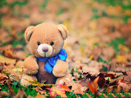 4k teddy bear toy photo free 1