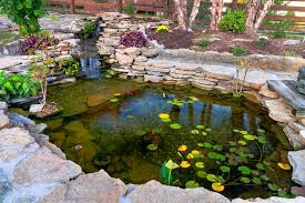 Small Picture commercial construction pond fish design construction garden pond