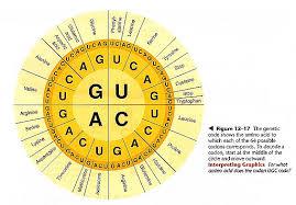 A Circular Code Table