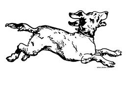 Running Dog Drawing Coloring