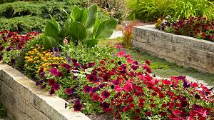 whether you re ordering soil or mulch or wondering how many plants to learning your garden s size in square feet is a good thing to know