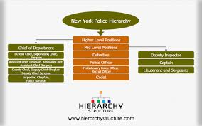 New York City Police Department Organizational Chart 7 Nypd Police Department Organizational Chart Nypd Org