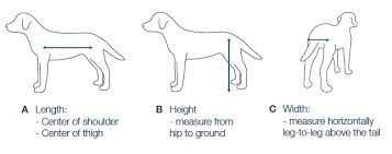 valgus dog. after carefully calculating a, b and c weighing the dog, refer to chart. valgus dog