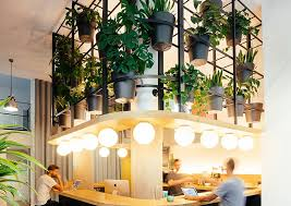 lighting for office space. Plants Line The Walls Of This Trendy, Laid Back Office Space In Barcelona. Lighting For