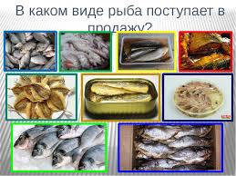 Проект по технологии Рыба в кляре  слайда 8 В каком виде рыба поступает в продажу