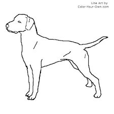 Small Picture Firefighter Dalmation Coloring Coloring Coloring Pages