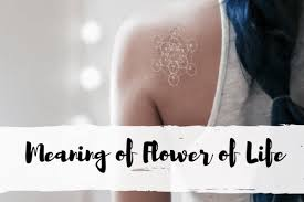The Meaning of <b>Flower of Life</b> Explained - One Tribe Apparel