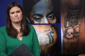 Ms 13 Wants To Send Younger More Violent Members To Us Official Says