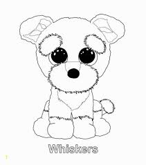 Boo The Dog Coloring Pages Zabelyesayan For Beanie Boo Kleurplaat