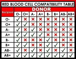 9 Basic Blood Type Compatibility Table