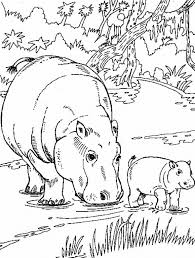 Wild Animal Coloring Page Wild Animal Coloring Page River Hippo