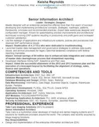 information architect resume 16 free sample application architect resumes sample resumes 2016