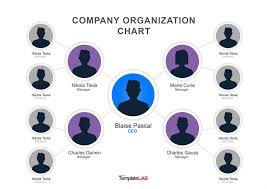 Free Hierarchy Chart 029 Template Ideas Organizational Chart Ppt Free Org