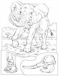 Small Picture Kids Free Coloring Pages Of Elephants Printable Elephant Coloring