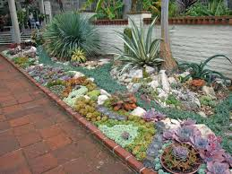Small Picture How to Plant an Outdoor Succulent Garden World of Succulents
