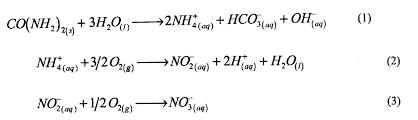 efecto de la temperatura y dosis de fertilización con urea sobre la actividad ureasa y cinética de mineralización de nitrógeno en andisoles del sur de chile