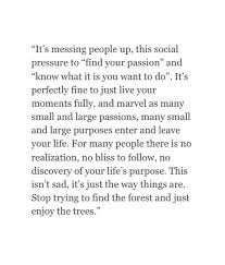 Trying Quotes Fascinating Stop Trying To Find The Forest And Just Enjoy The Trees П��✨