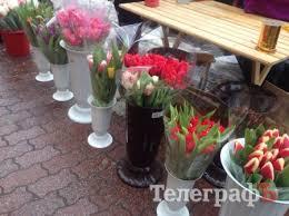 Картинки по запросу квіткові магазини олександрія