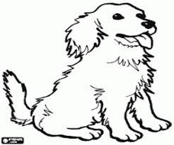 Kleurplaten Honden Kleurplaat 2