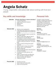 Sample Resume No Experience High School Student High School Student