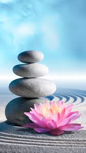 Zen Stones and Lotus, flower, lotus ...