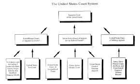 Criminal Justice System Government Structure Lawfirms