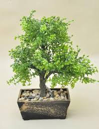 office bonsai. Bonsai Tree In Wooden Pot, Artificial Plant Decoration For Office And Home 33 Cm
